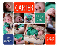 Carter Cary - Newborn